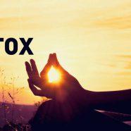Stage Yoga Détox, réservez dès maintenant